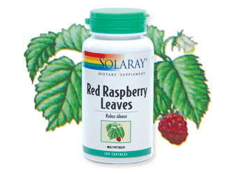 Solaray Red Raspberry Leaves